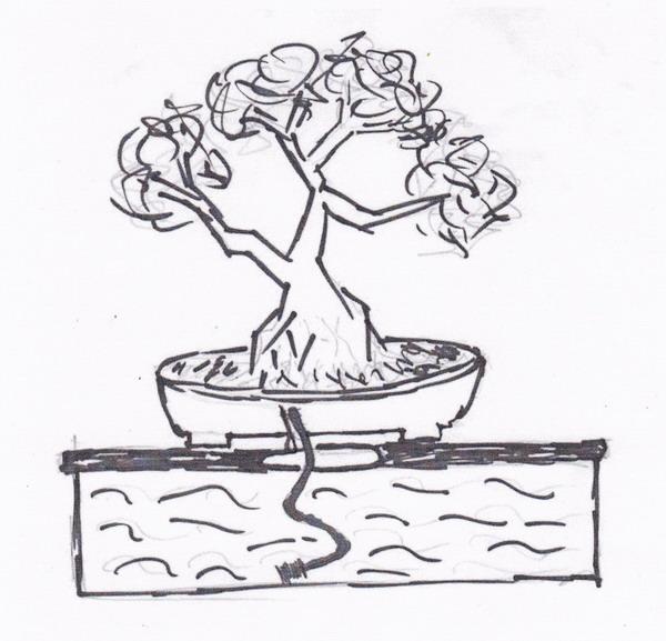 Irrigation bowl